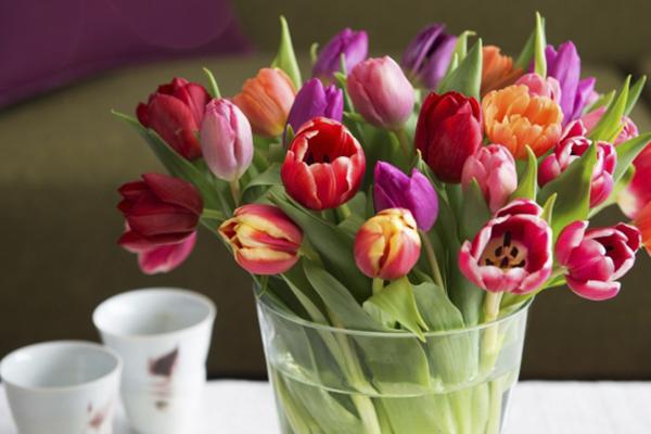 Musegaten Blomster